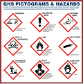 Large Pictogram Poster